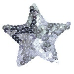 Bad Kitty Pasties Silver Star